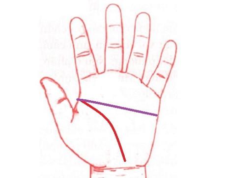 Đường tình duyên, công danh và tài lộc của người bàn tay chữ Nhất2