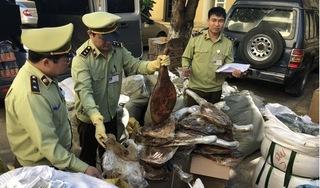 Bắt quả tang chân giò lợn, xì dầu nhập lậu về Hà Nội tiêu thụ