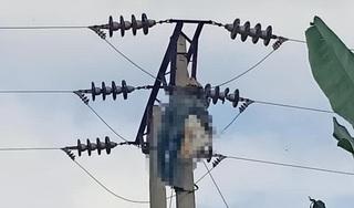 Trèo lên cột điện cao thế bắt ong, nam thanh niên bị điện giật tử vong