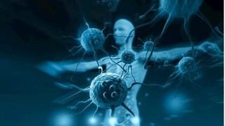 Chế tạo thành công loại virus chuyên tìm và diệt tế bào ung thư