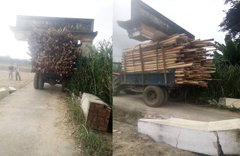 Xôn xao hình ảnh xe công nông chở cây cõng cổng làng di chuyển trên đường
