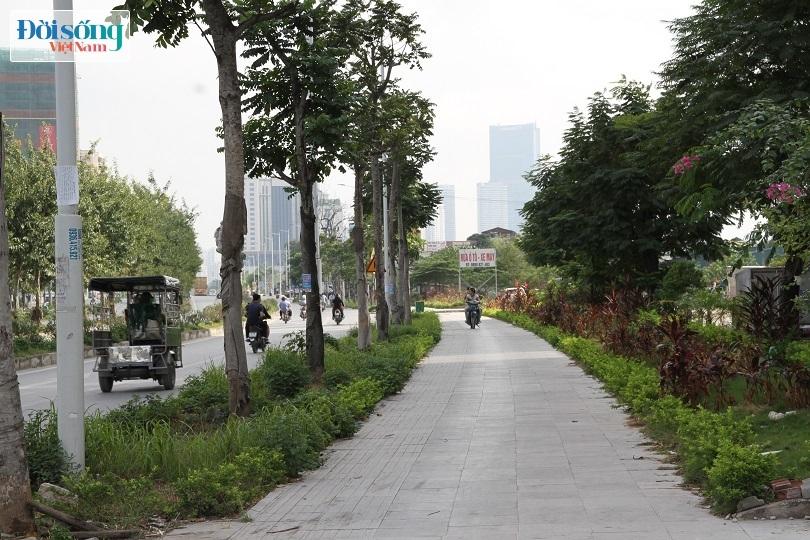 Cận cảnh con đường 8 làn xe mang tên nhà tư sản Trịnh Văn Bô7