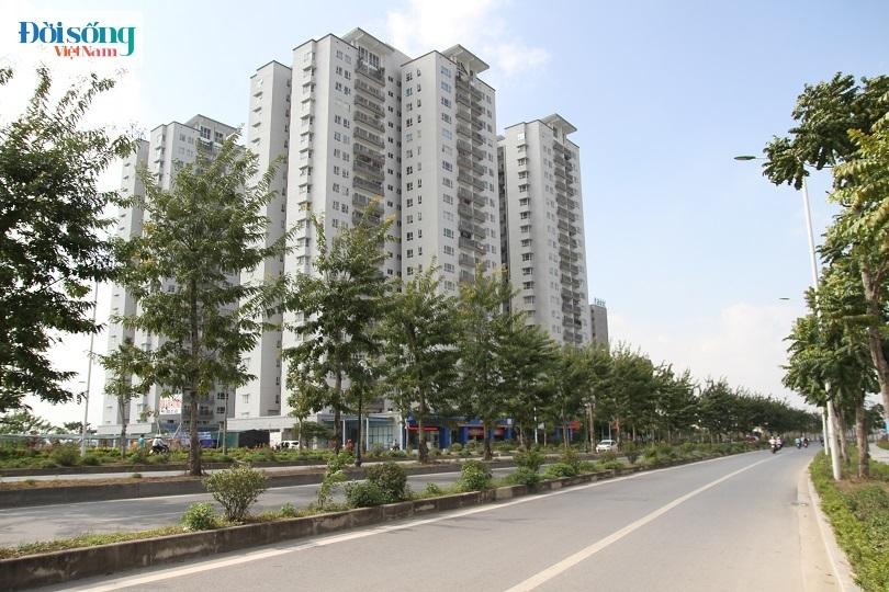 Cận cảnh con đường 8 làn xe mang tên nhà tư sản Trịnh Văn Bô2