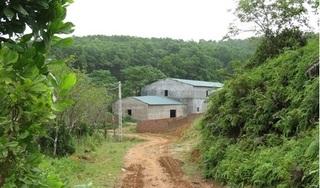 """Vụ cấp """"sổ đỏ"""" trên đất rừng: Cần làm rõ trách nhiệm của Bí thư Huyện ủy Ba Vì"""