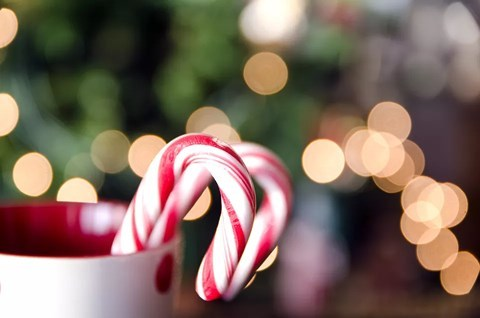 Cách làm kẹo gậy Giáng sinh cho bé thơm ngon ngây ngất2
