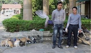 Vĩnh Phúc: Bắt quả tang đối tượng trộm hàng chục con mèo đem bán