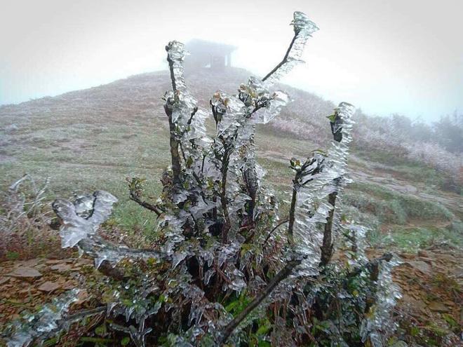 Lạnh cực độ, đỉnh Mẫu Sơn chìm trong băng giá 3