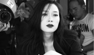 Những ca sỹ làm rạng danh nhạc Việt trên bản đồ thế giới năm 2018