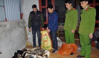 Hà Nam: Bắt giữ hai anh em ruột ăn trộm gần 1 tạ mèo