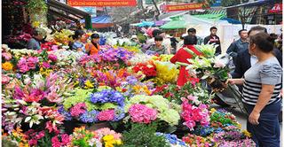 Những chợ hoa nức tiếng nhất đất Hà Thành