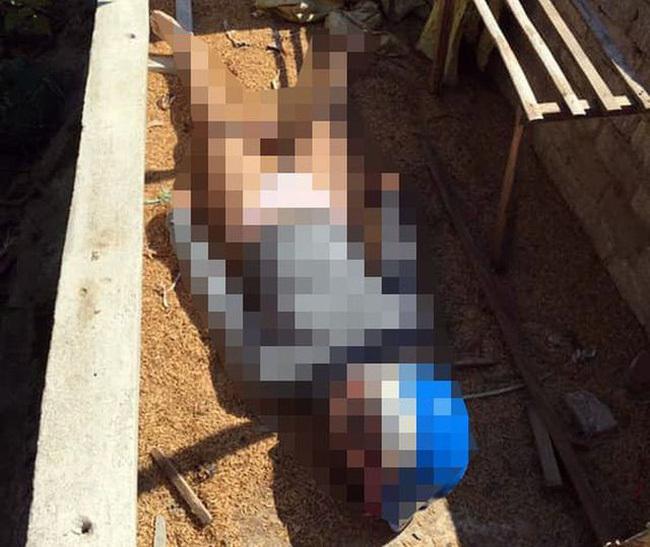 Khu vực chuồng lợn nơi chị T phát hiên ra thi thể cô gái đầu tiên