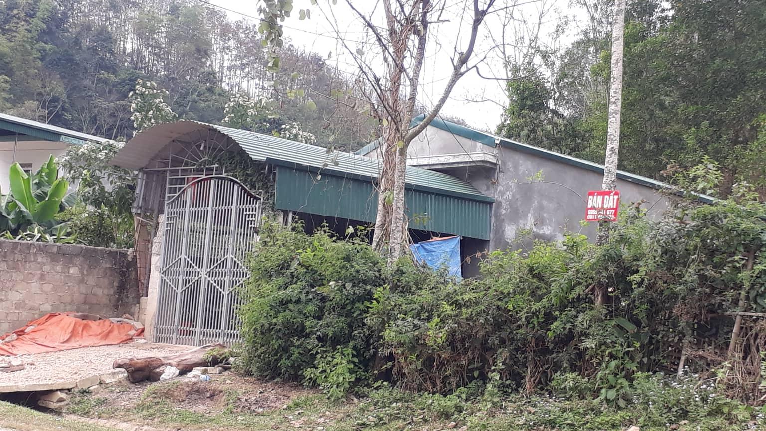 Cô gái đi giao gà bị sát hại ở Điện Biên chiều 30 Tết