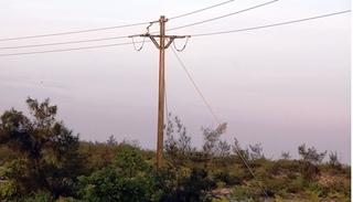 Trèo lên cột điện bẫy chim, người đàn ông bị điện giật tử vong