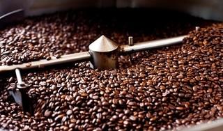 Giá cà phê hôm nay 27/2: Giảm mạnh 300 đồng/kg