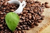 Giá cà phê hôm nay 17/4: Quay đầu giảm 200 đồng/kg sau khi tăng mạnh