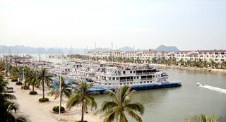 Du khách trượt chân ngã tử vong tại Cảng quốc tế Tuần Châu