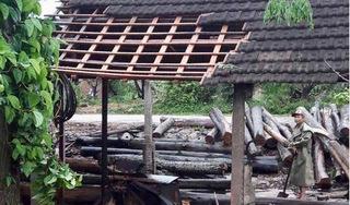 Nghệ An: Lốc xoáy làm tốc mái 65 nhà dân, hàng chục ha hoa màu hư hại