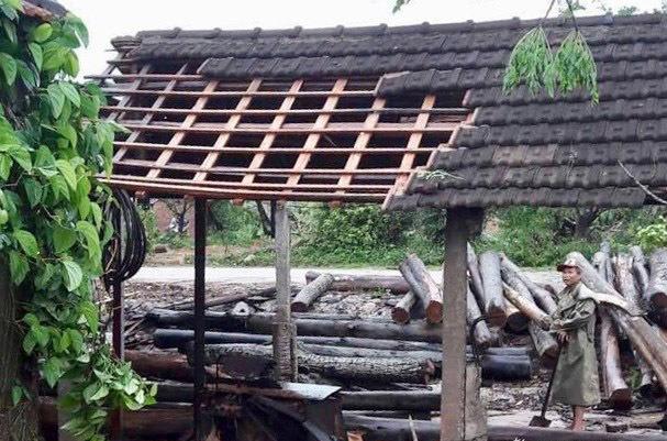 Nghệ An: Lốc xoáy tốc mái 65 nhà dân, 20ha hoa màu bị tàn phá