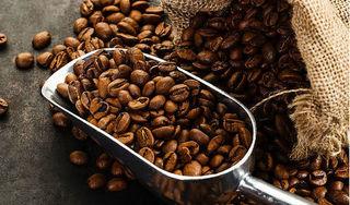 Giá cà phê hôm nay 28/8: Bất ngờ tăng mạnh 400 đồng/kg