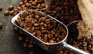 Giá cà phê hôm nay 8/8: Tiếp tục đà tăng 200 đồng/kg