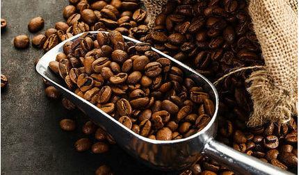 Giá cà phê hôm nay 25/5: Giá không đổi so với hôm qua