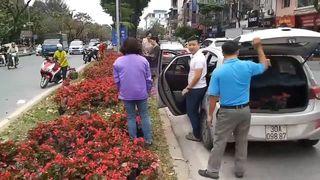 Đề nghị trích xuất camera làm rõ hành vi tự tiện lấy hoa ở Kim Mã