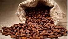 Giá cà phê hôm nay 17/8: Bất ngờ giảm mạnh 400 đồng/kg
