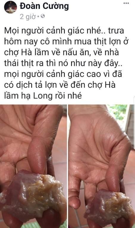 Quảng Ninh: Xuất hiện người đăng tải thông tin sai sự thật về dịch tả lợn Châu Phi
