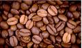Giá cà phê hôm nay 12/7: Tiếp tục giảm nhẹ 100 đồng/kg