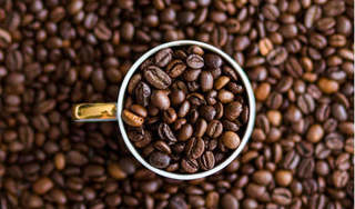 Giá cà phê hôm nay 30/9: Đầu tuần tăng nhẹ 100 đồng/kg