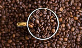 Giá cà phê hôm nay 25/3: Đi ngang, không đổi so với phiên chốt tuần trước