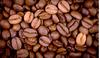 Giá cà phê hôm nay 24/3: Thế giới giảm nhẹ, trong nước ổn định