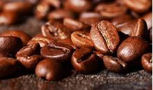 Giá cà phê hôm nay 21/8: Dao động từ 32.000 – 33.100 đồng/kg