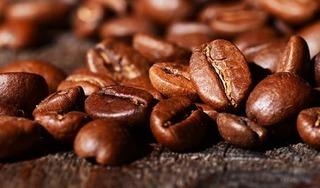 Giá cà phê hôm nay 30/4: Chưa có biến động mới trong kỳ nghỉ lễ