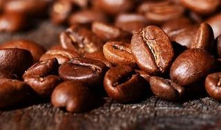 Giá cà phê hôm nay 29/6: Tăng phục hồi 400 đồng/kg