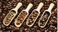 Giá cà phê hôm nay 31/3: Già cà phê nguyên liệu lao dốc đến 800 đồng
