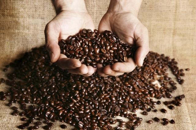 Giá cà phê hôm nay 27/8: Dao động trong khoảng 32.000 – 33.100 đồng/kg