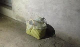 Phát hiện bé gái sơ sinh bị bỏ rơi trước cửa nhà dân trong đêm khuya