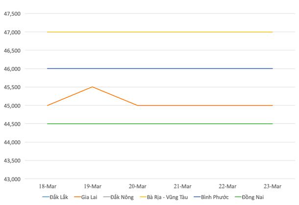 Giá hồ tiêu hôm nay 24/3: Giá tiêu Bà Rịa - Vũng Tàu đang cao nhất toàn miền