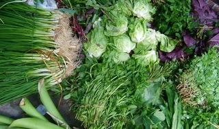 Chuyên gia khẳng định ăn rau bẩn dễ nhiễm sán hơn thịt bẩn