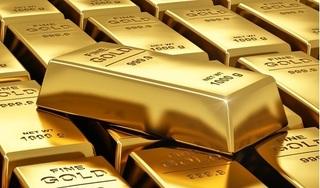 Giá vàng hôm nay 14/8: Tăng dồn dập, liên tiếp phá đỉnh cao