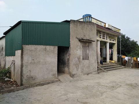 Nữ sinh bị 5 bạn lột đồ đánh đập dã man ở Hưng Yên: Liên tục hoảng loạn, ôm đầu la hét