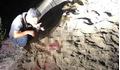 Vụ bé trai bị chó cắn tử vong: Bình thường cháu bé vẫn chơi với đàn chó