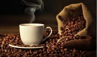 Giá cà phê hôm nay 6/5: Tiếp tục giảm 100 đồng/kg do áp lực dư cung