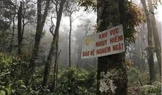Vĩnh Phúc: Nhóm người bị các đối tượng đe doạ, cướp tài sản trong rừng