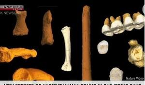 Phát hiện hóa thạch xương của loài giống người ở Philippines