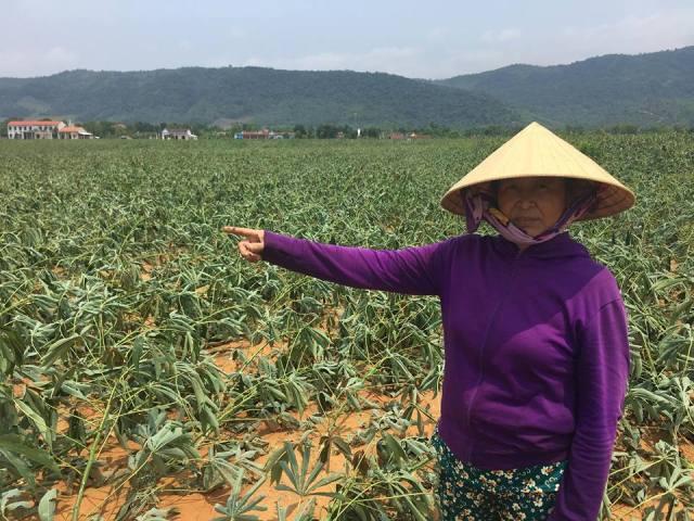 Quảng Bình: Lốc xoáy, mưa đá càn quét, hàng chục căn nhà bị tốc mái4