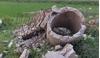 Thanh Hóa: 3 học sinh tử vong khi đi xe máy tông vào cống ven đường