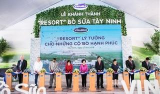 Việt Nam sỡ hữu hệ thống trang trại bò sữa chuẩn Global G.A.P lớn nhất chấu Á