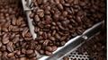 Giá cà phê hôm nay 19/4: Tăng nhẹ trở lại 100 đồng/kg